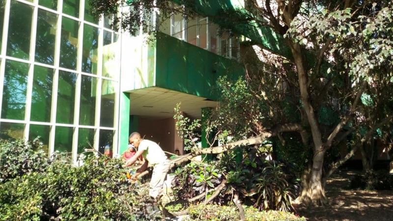 Estudiantes y trabajadores de la UCI en labores de limpieza de tragantes.
