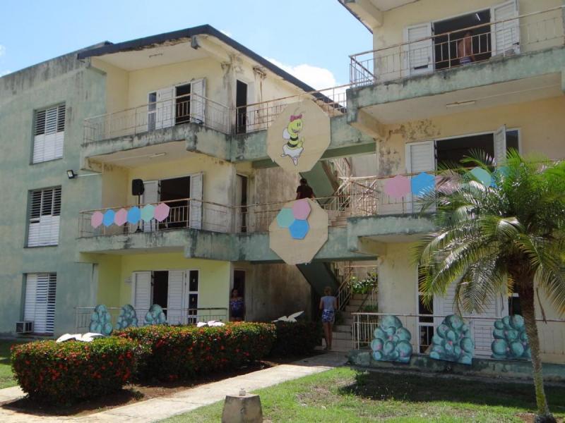 La FICI engalanó su residencia con elementos de La Colmenita.