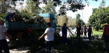 Movilizada comunidad universitaria en limpieza y poda de árboles, a propósito del Ejercicio Meteoro 2018.