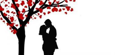 """""""El amor como el árbol, ha de pasar de semilla a arbolillo, a flor, y a fruto"""""""